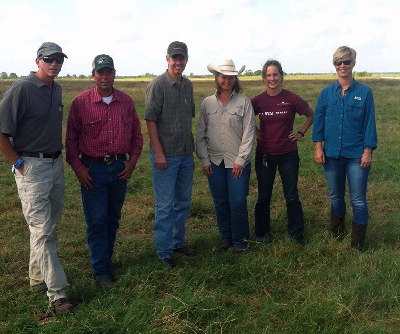 From left to right: John Preyer, Restoration Systems Principal, Sam Reese, Manager, Warren Ranch, Wayne Walker, Common Ground Capital Principal, Amy Hicks, Service Provider for Warren Ranch, Christine Mansfield, Conservation Education Specialist, and Callie Easterly, Chief Grant Writer, Katy Prairie Conservancy.